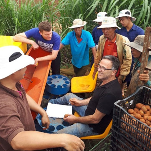 Vitalising the Vietnamese potato sector: the results of the 4th project year