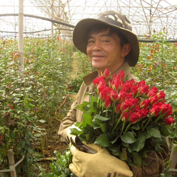 New milestone: Over 100 plant varieties registered by Fresh Studio in Vietnam
