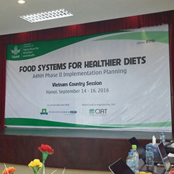 Healthy food systems for healthier diets