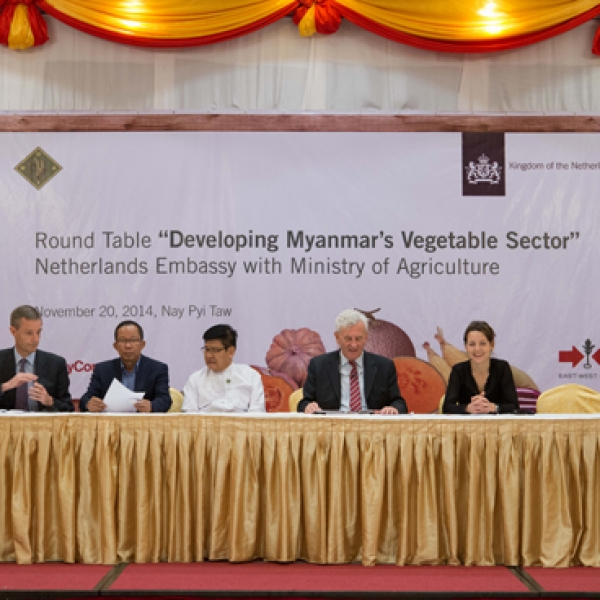 Round Table 'Developing Myanmar's Vegetable Sector'